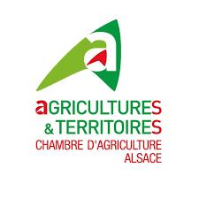 Logo CA Alsace